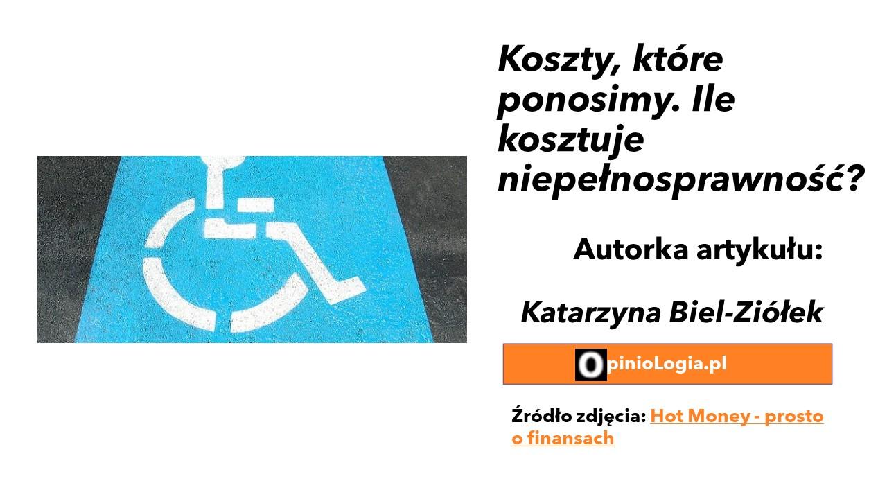 Koszty, które ponosimy. Ile kosztuje niepełnosprawność?