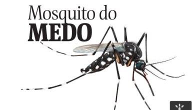 PE tem 1º caso de doença que paralisa os músculos associada a chikungunya 3