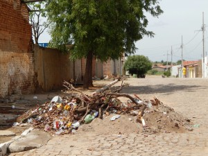 20160125175345-300x225 Mato, lixo e esgotos a céu aberto mostram descaso da Gestão do Prefeito Junior Nobrega no município da Prata, no Cariri