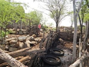 20160125175347-300x225 Mato, lixo e esgotos a céu aberto mostram descaso da Gestão do Prefeito Junior Nobrega no município da Prata, no Cariri
