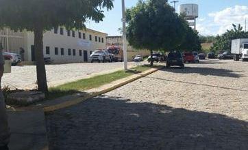 Gato é capturado dentro de prisão da Paraíba com dois celulares colados ao corpo 2