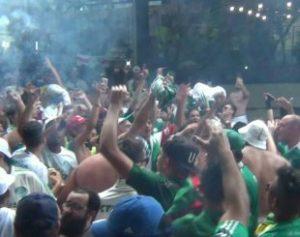 festapal-310x245-300x237 Torcedor do Palmeiras morre durante comemoração de título, em São Paulo
