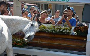 cavalo-chorou-no-caixao-300x188 Cavalo que se despediu de vaqueiro morto na PB mudou comportamento, diz irmão
