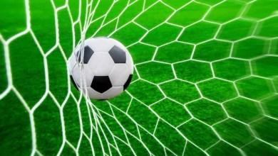Palmeiras goleia CSA por 6 a 2 no Pacaembu 3