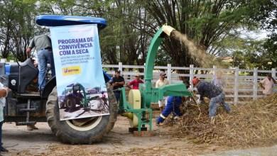Secretaria de Agricultura retoma uso da ensiladeira para criadores da região de Monteiro 7