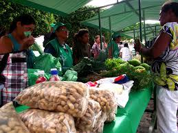 download-2 Produtores agroecológicos do Cariri participam de feira na semana do meio ambiente