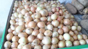 SAM_7007-1-300x169 Verdurão JK em Monteiro:  Frutas e verduras selecionadas diretamente da CEASA
