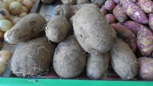 SAM_7010-300x169 Verdurão JK em Monteiro:  Frutas e verduras selecionadas diretamente da CEASA