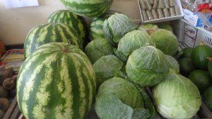 SAM_7018-Cópia-1-300x169 Verdurão JK em Monteiro:  Frutas e verduras selecionadas diretamente da CEASA
