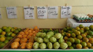 SAM_7042-300x169 Verdurão JK em Monteiro:  Frutas e verduras selecionadas diretamente da CEASA