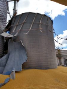 WhatsApp-Image-2018-08-08-at-10.43.24-1-696x928-225x300 Funcionário de fábrica morre soterrado após silo de milho romper