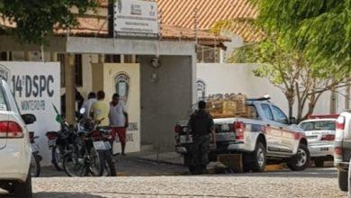 Em Monteiro: Polícia Ambiental encontra aves em cativeiro e multa dono em R$ 40,00 mil 5