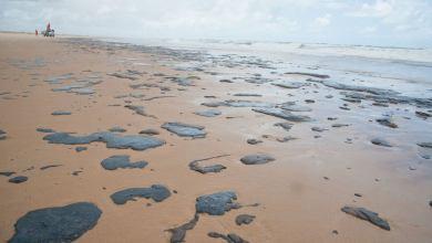 Governo tem suspeita sobre origem de manchas de óleo, diz Bolsonaro 1