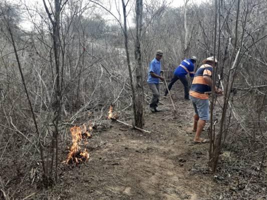 INCENDIO-ZONA-RURAL-MONTEIRO2-533x400 Incêndio volta a atingir zona rural de Monteiro