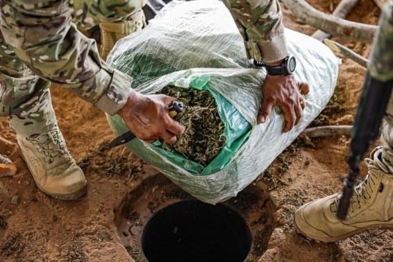a975a72e-eaaa-4c69-8dad-5dfd61bb5599 Polícia Civil da PB incinera 2,5 toneladas de drogas avaliada em mais de R$ 10 milhões.