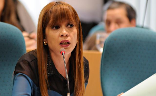 La Diputada del FPVS Stella García - Foto: OPI Santa Cruz/Francisco Muñoz