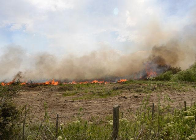 Incendio descontrolado en Estancia Alta Vista, avanza hacia El Calafate