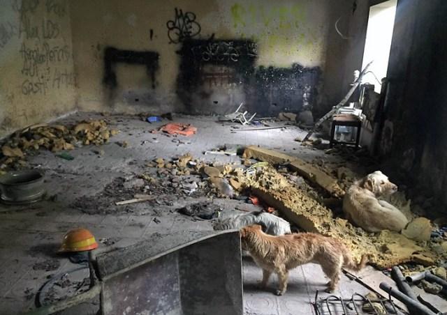 La Gran Estafa II: Hicieron desaparecer más de 12,9 millones de pesos para refaccionar el pabellón 10 que hoy está como se ve en las fotos