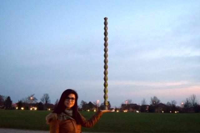 opisicaneagra coloana infinitului