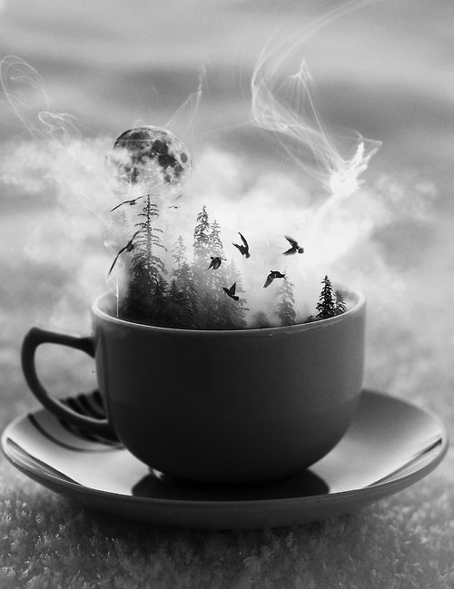 cup of coffee story