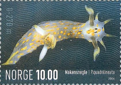 stamp Polycera quadrilineata - Norway