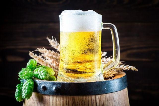 Pivo, pixabay, pivné ocenenia