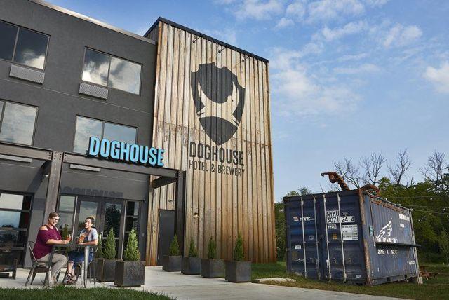 DogHouse, brewDog, hotel, pivný hotel