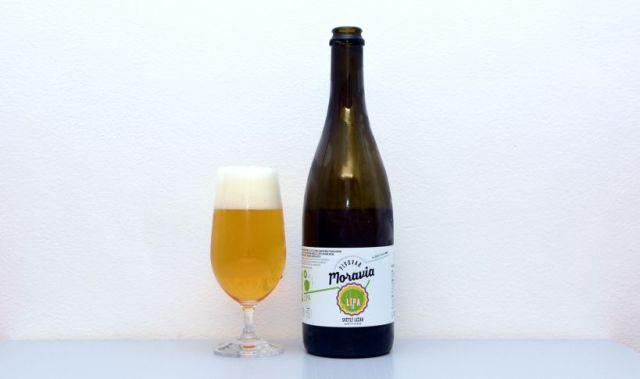 Lípa, Moravia, ležiak, pivo