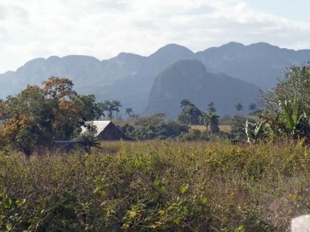 Vinales: Spaziergang zu den Mogotes