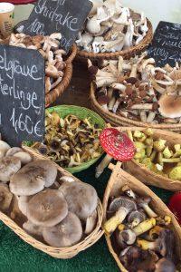 Pilze auf dem Markt in Berlin
