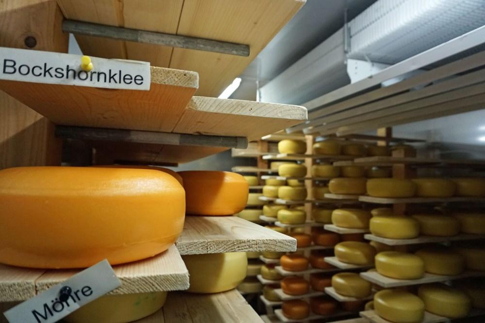 Haus Bollheim: Käse muss reifen