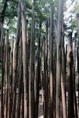 Klingt Holz - und falls ja: wie?