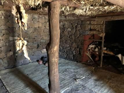 Nachgebaute Hütte im Infozentrum