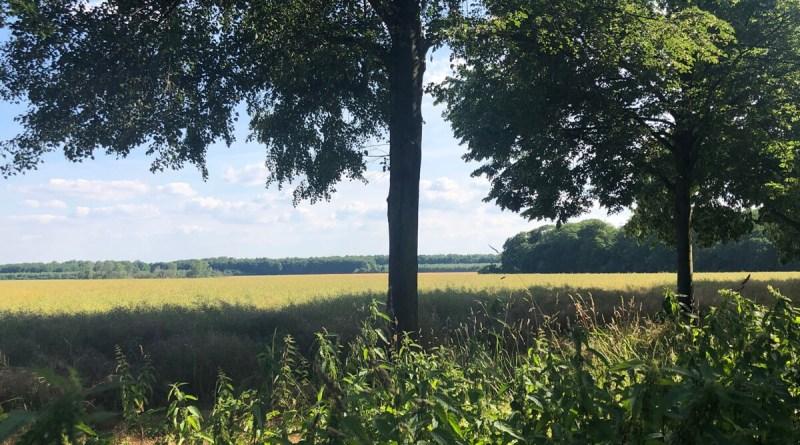 Stadtwandern von Brück nach Merheim
