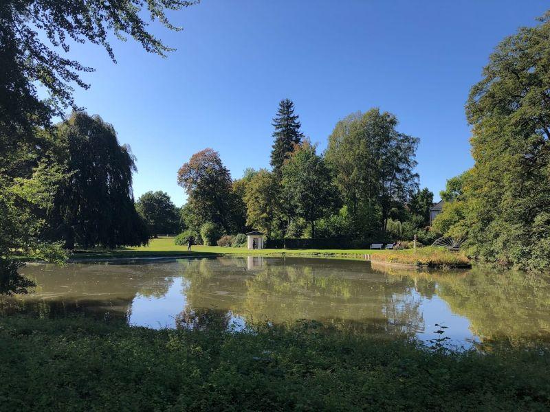 Teich im Gräflichen Park in Bad Driburg