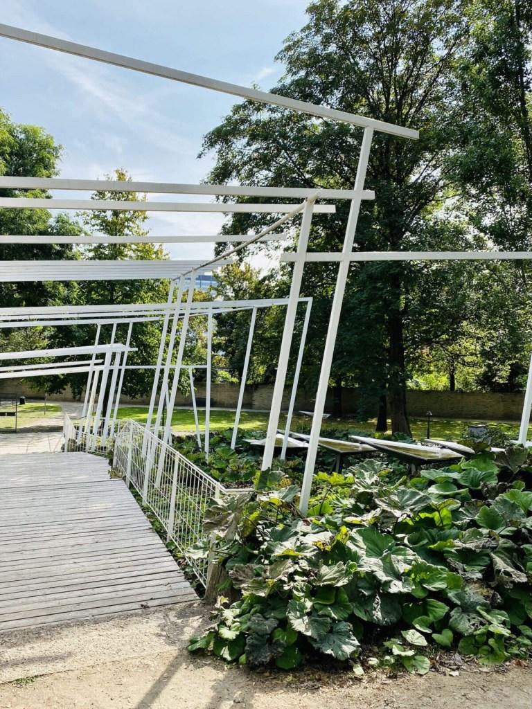 Im Kölner Rheinpark entspannen und flanieren