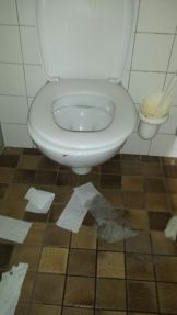 Toilet floor covered with toilet paper