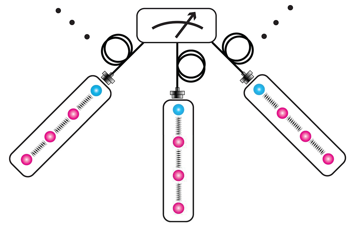 Atomic Cousins Team Up In Early Quantum Networking Node