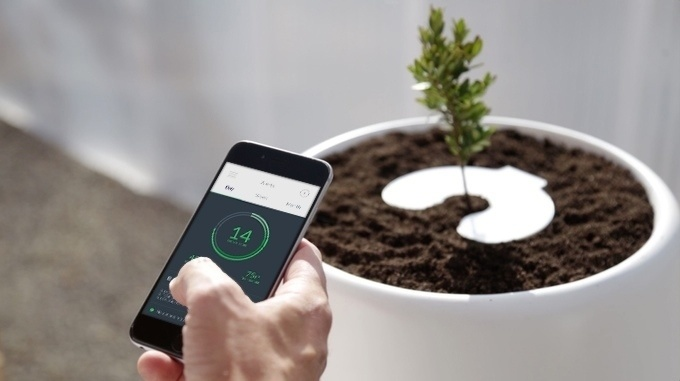 A sensor syncs the Bios Incube to the smartphone, allowing users to monitor the tree.