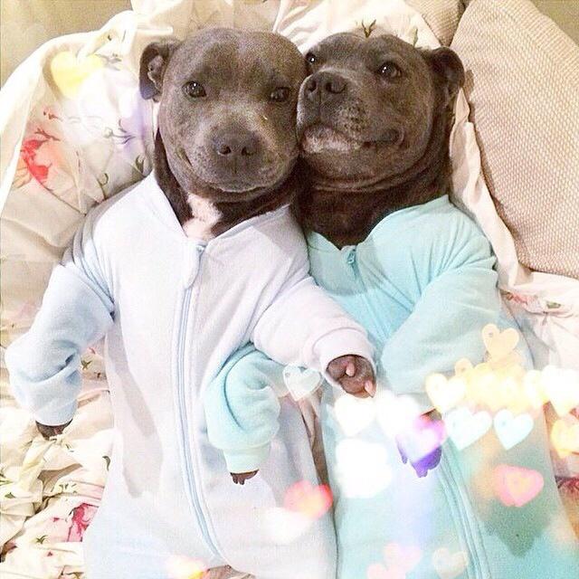 Twinsies in onesies!