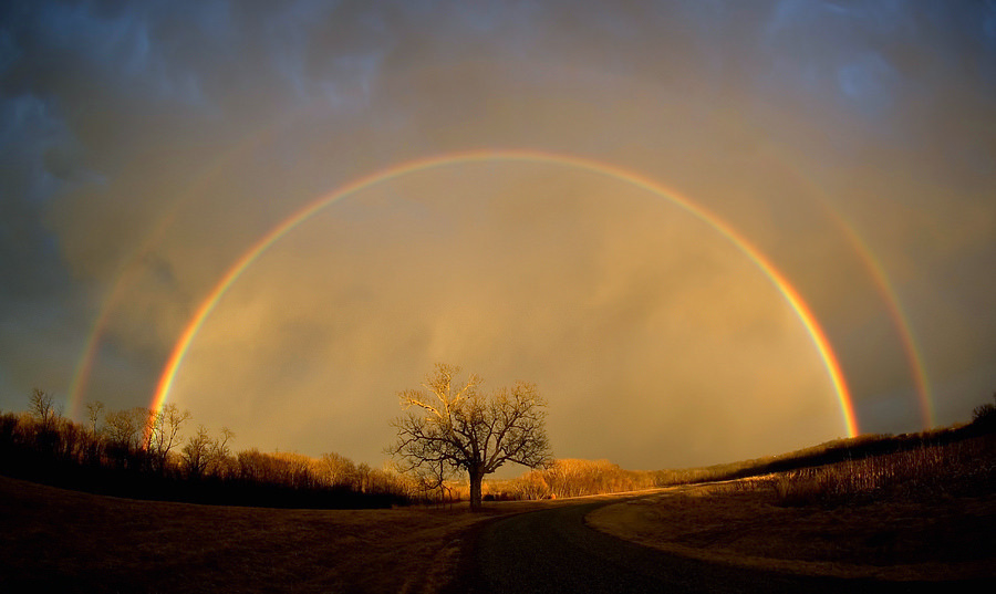 Rainbows are actually Circular. We don't typically see a full circle rainbow because the Earth's horizon blocks the lower part.