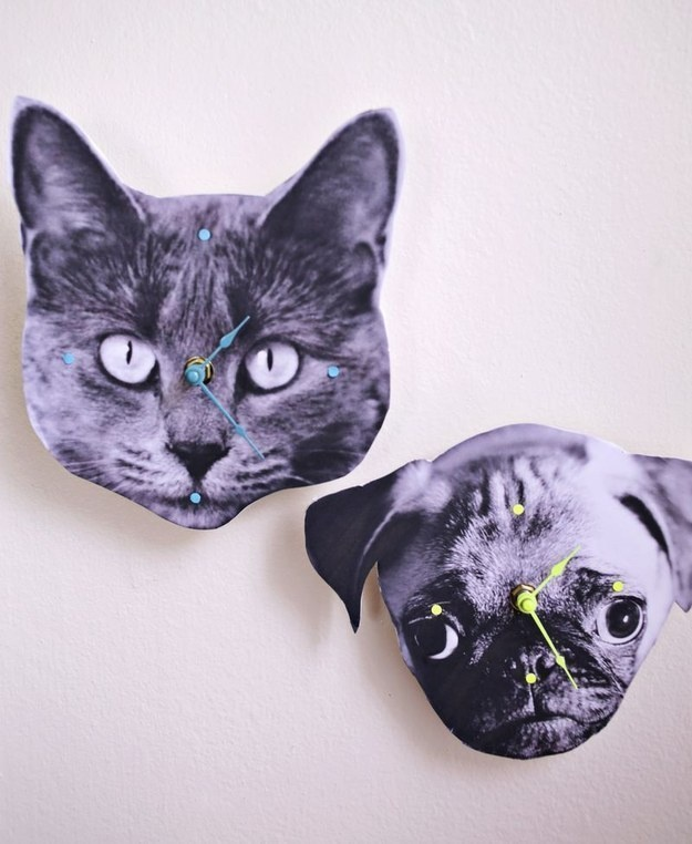 Print out a photo of your pet's face and turn it into a clock.