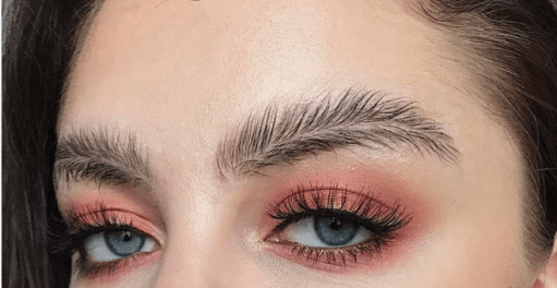 Eyebrow Trend - Feathered