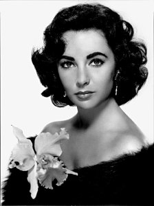 Elizabeth taylor have permanent eyebrows