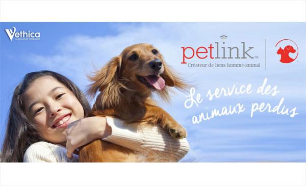 PETLINK,un partenaire aux poils !