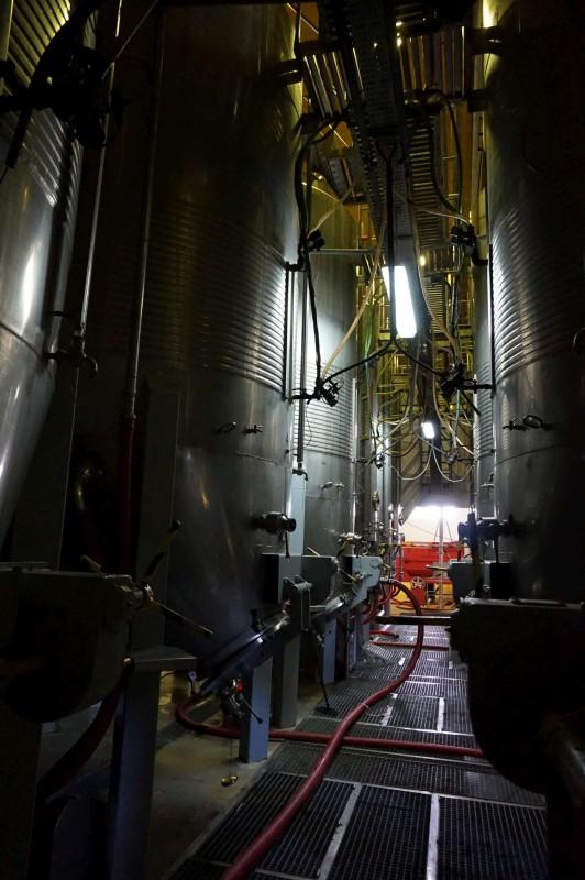 V Calheiros Cruz se sice specializují pouze na stolní víno, ...