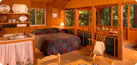 West Virginia Cabin Rentals in the New River Gorge