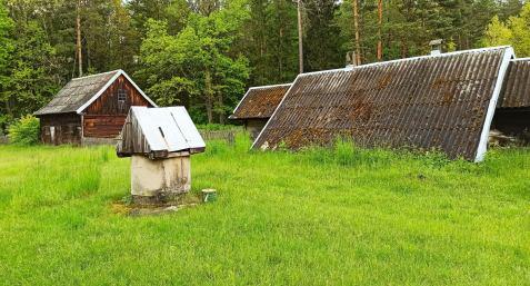 Wyprawa wgłąb Puszczy Bialowieskiej