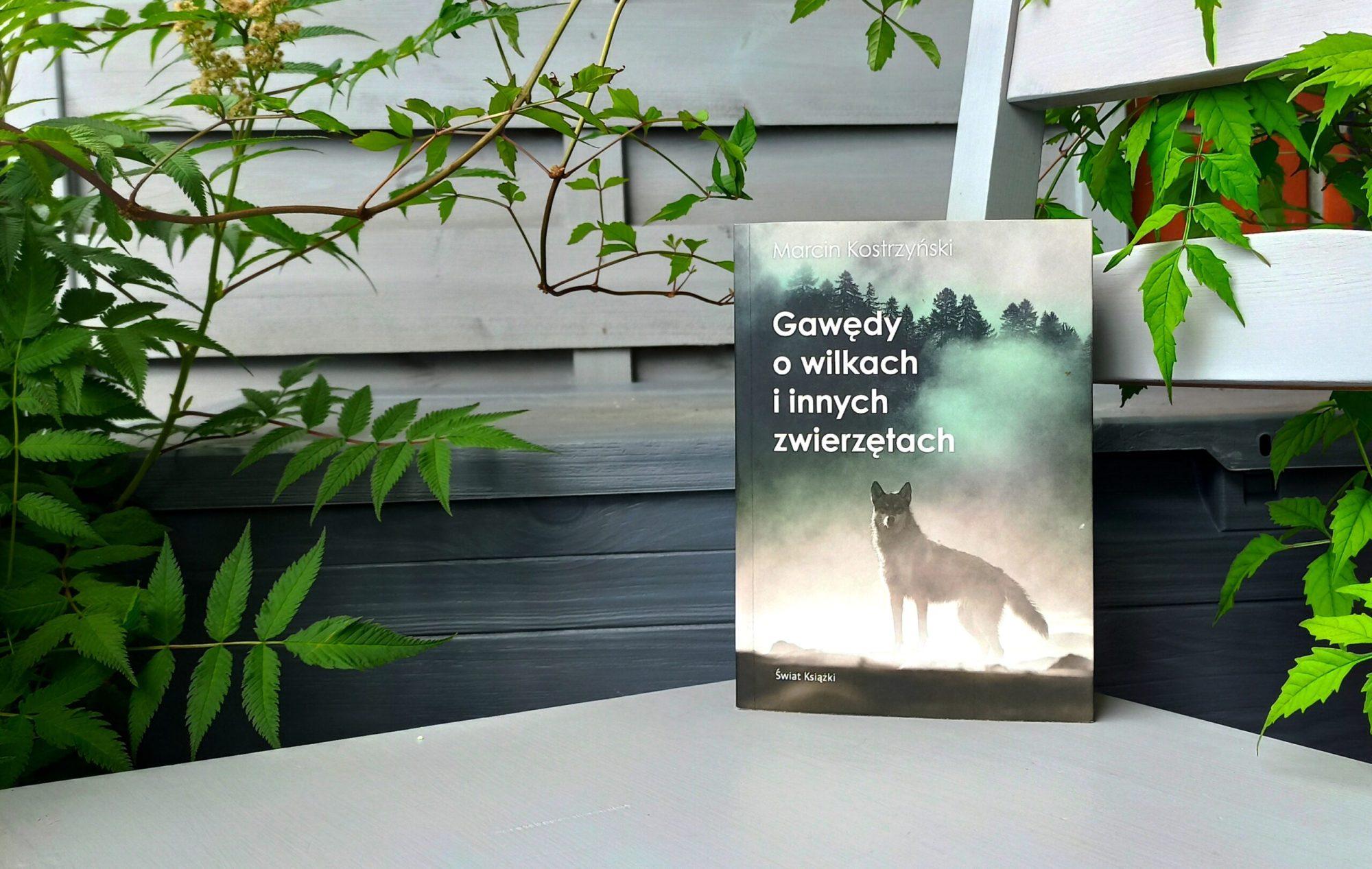 """""""Gawędy owilkach iinnych zwierzętach"""" Marcina Kostrzyńskiego [recenzja]"""