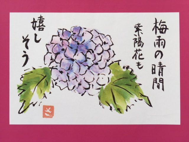 【絵手紙】母の紫陽花ギャラリー展にようこそ(o^^o)